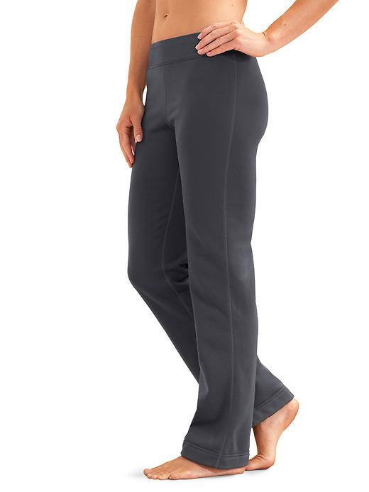 Athleta Womens Polartec® Power Stretch® Pant Flint Grey Size 2X